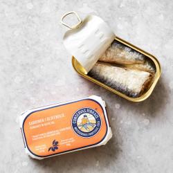 Grøndals sardiner i olivenolie.